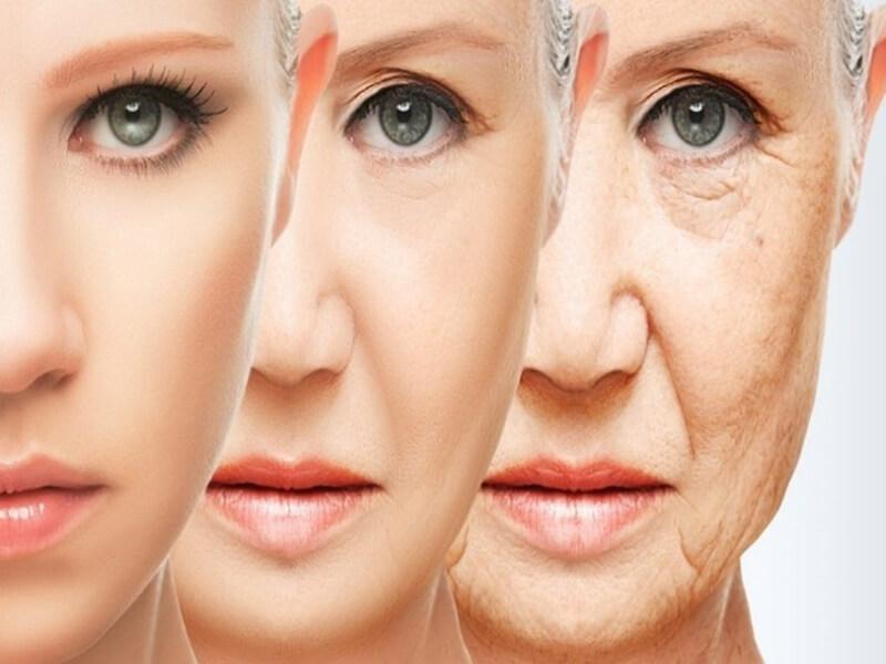Lão hóa là một quá trình tất yếu trong cuộc sống